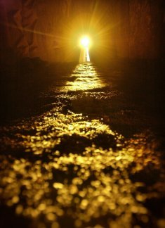 The light will return poem